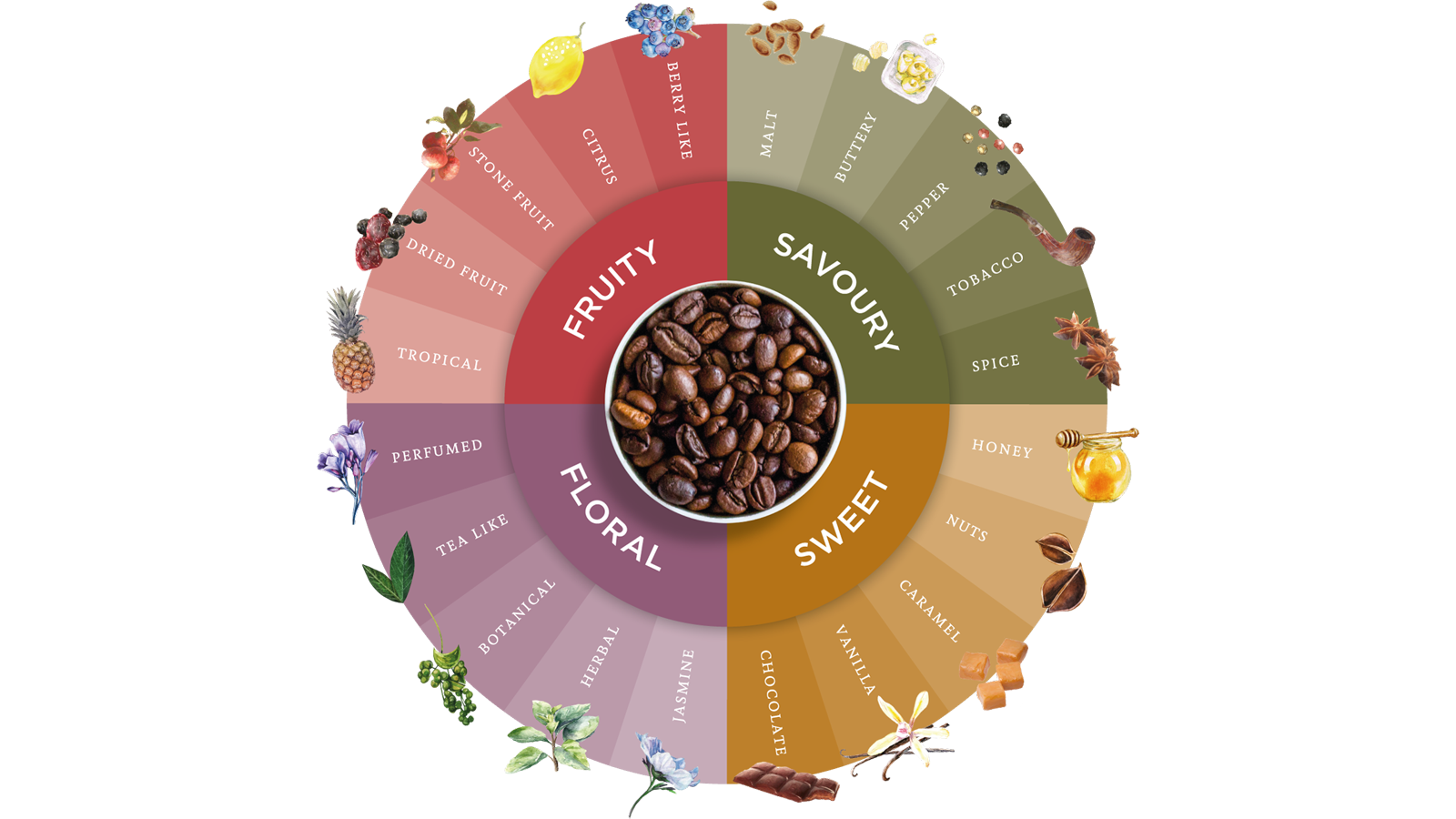 Coffee Flavour Wheel