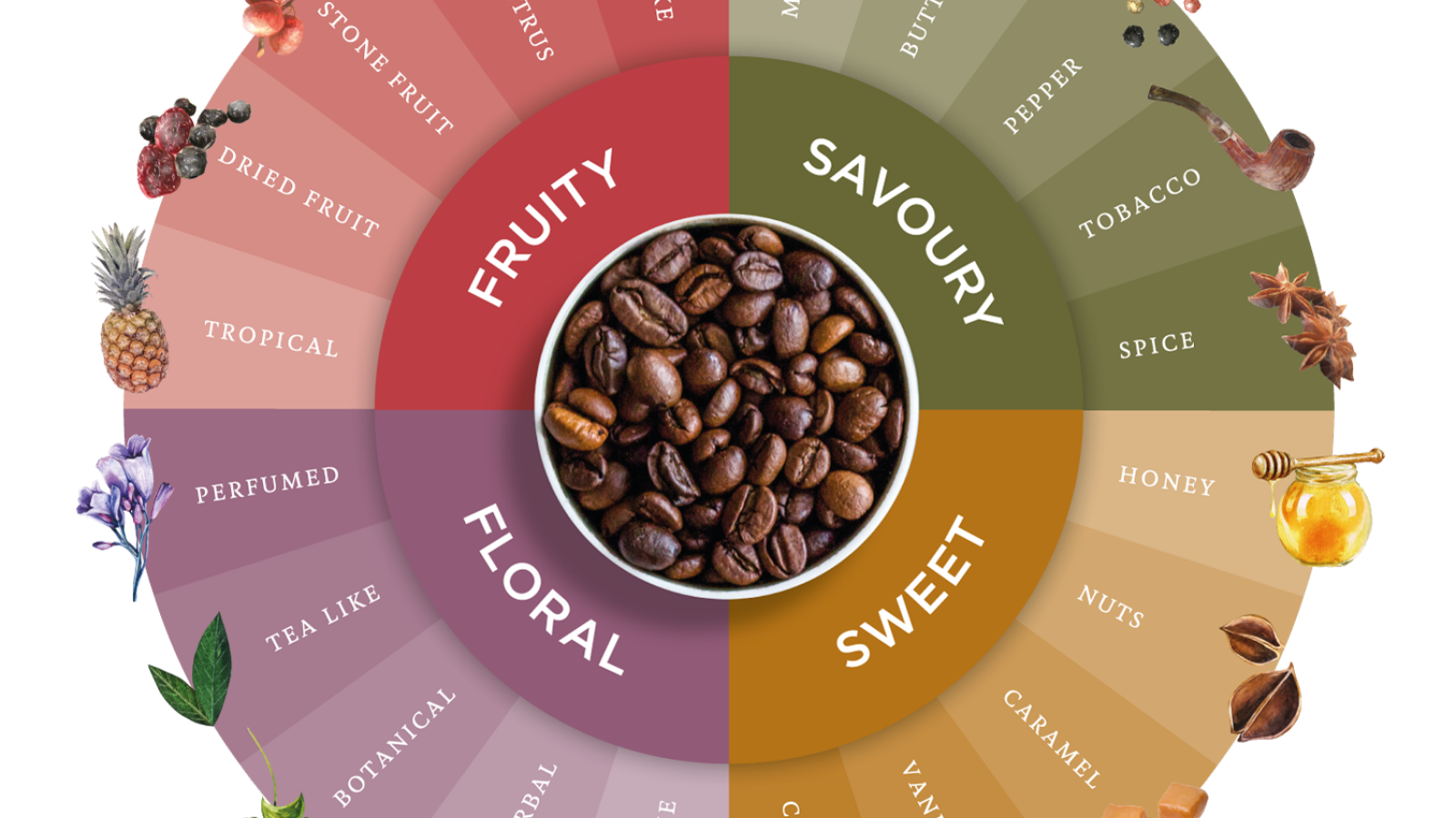 Coffee flavour wheel, flavours of coffee