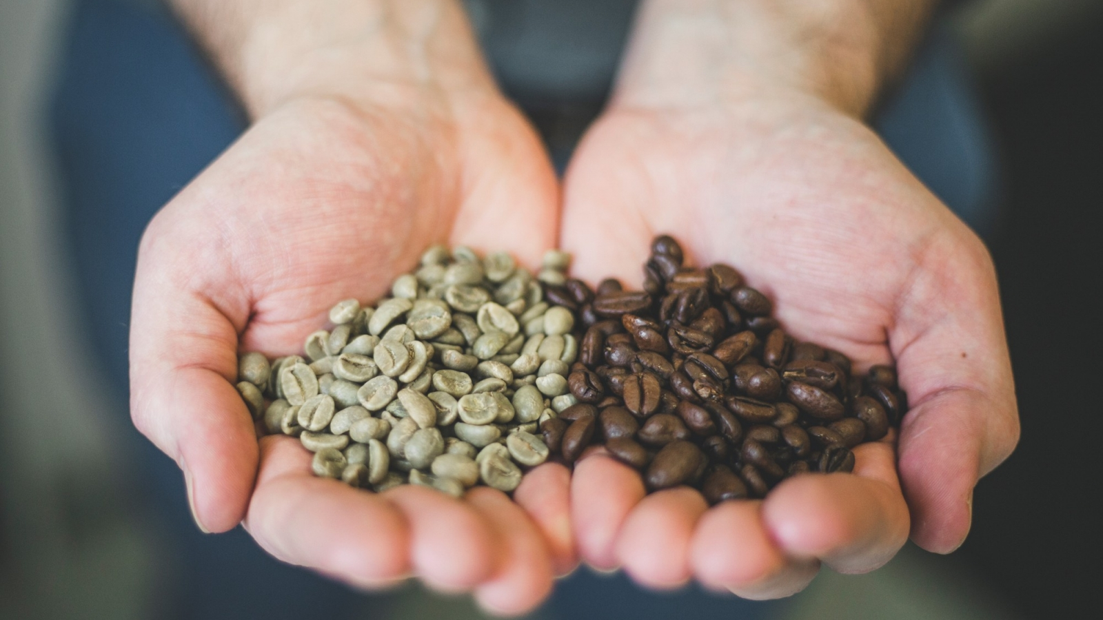 Green coffee beans, roasted coffee beans