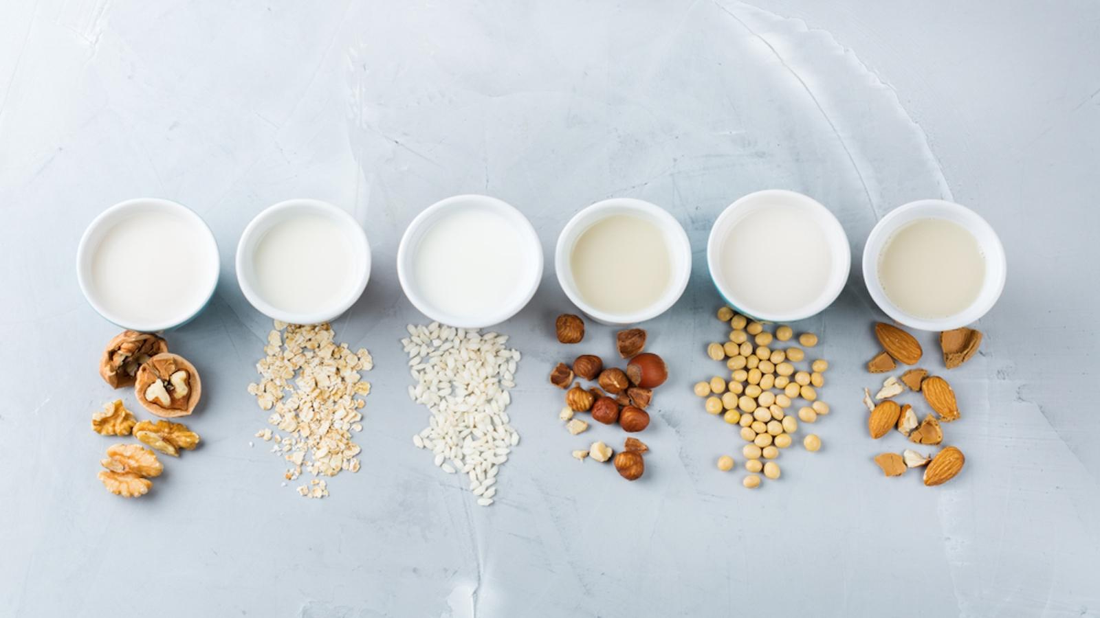 non-dairy milk alternatives